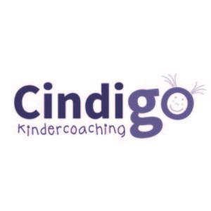 coachveilingen-Cindigo-coaching