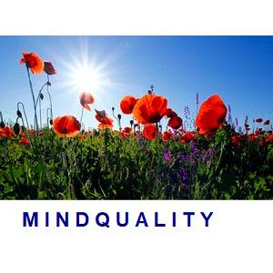 coachveilingen-MindQuality